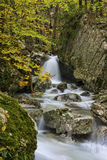 Waterfall in the woods in Autumn with foliage colors, Monte Cucc Stock Photography