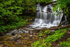 Waterfall In The Woods Stock Images