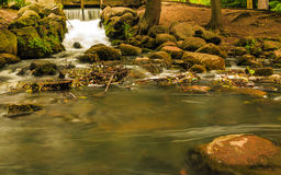 Waterfall in woods green forest. stream in oliva park gdansk. Royalty Free Stock Images