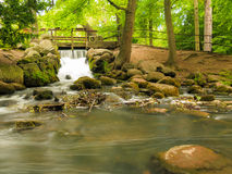 Waterfall in woods green forest. stream in oliva park gdansk. Royalty Free Stock Image