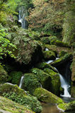 Waterfall stones. Small waterfall and stones in summer forest,with moss on stones Stock Photos