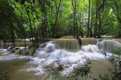 Waterfall  in the yellow forest Thailand Stock Images