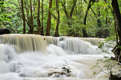 Waterfall of yellow stream Stock Images
