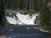 Waterfall at Yellowstone Stock Image