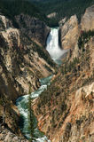 Waterfall in Yellowstone Stock Photography