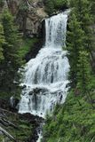 Waterfall in Yellowstone Royalty Free Stock Photos