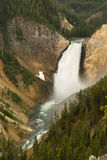Waterfall Yellowstone National Park Wyoming United States Stock Photography