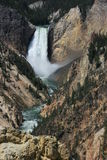 Waterfall in Yellowstone. A waterfall viewed from a bridge in Yellowstone National Park Royalty Free Stock Photography