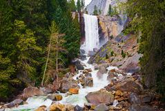 Waterfall in Yosemite Royalty Free Stock Photo