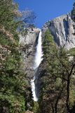 Waterfall at Yosemite National Park royalty free stock photos