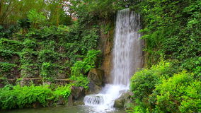 Waterfall in zen garden. Natural waterfall surrounded by green spring foliage in a zen garden stock video footage