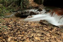 Waterfall in zengcheng forest park,guangdong, china Royalty Free Stock Photo