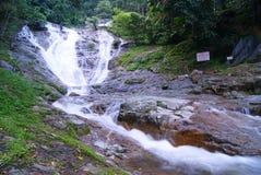 waterfall01 arkivfoto