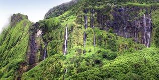 WATERFALLAS op FLORES-EILAND - de Azoren - Portugal stock foto's