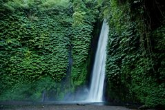 Free Waterfalls Stock Photos - 10398243