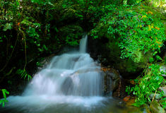 Waterfalls Stock Images