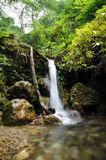 Waterfalls. Waterfall with stone in the mountain Royalty Free Stock Photo