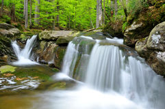 Waterfalls. Beautiful waterfalls in the Bavarian Forest-Germany Royalty Free Stock Photos