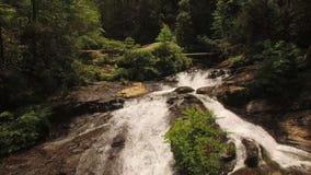 Waterfalls Aerial. V1 Flying up Panther Creek waterfall in Georgia stock footage