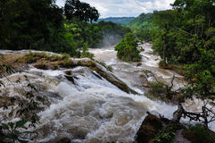 Waterfalls in Agua Azul, Chiapas, Mexico Stock Photography