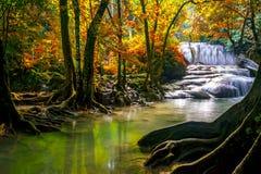 Free Waterfalls And Fish Swim In The Emerald Blue Water In Erawan National Park. Erawan Waterfall Is A Beautiful Natural Rock Waterfall Stock Photo - 163295900