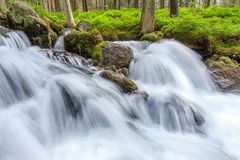 Waterfalls. Beautiful  waterfalls in a spring Stock Image