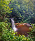 Waterfalls on Black Rock Between Green Leaved Plants and Trees during Daytime Royalty Free Stock Photo