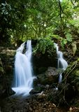 Waterfalls of  Bwindi forest. 2. Wateralls of  Bwindi forest. In dark green wood Bwindi the mountain small river flows, by falls being rolled on hillsides and Royalty Free Stock Image