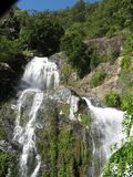 Waterfalls in Cairns Australia stock photo