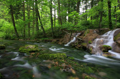 Waterfalls in the Carpathian Mountains. In spring Royalty Free Stock Photos