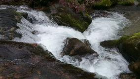 Waterfalls stock video