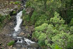 A waterfalls and creek in Queensland. In Australia Royalty Free Stock Images