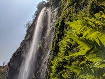 Waterfalls During Daytime Stock Images