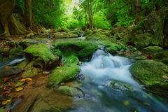 Waterfalls in deep forest ,natural green background Royalty Free Stock Image