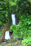 Waterfalls in Dominica, Caribbean Islands Stock Images