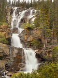 Waterfalls, Falls in Canadian Rocky Mountains Stock Images