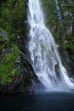 Waterfalls in Fiordland Royalty Free Stock Image