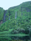 Waterfalls in Flores Island (Azores) Royalty Free Stock Photography