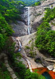 Waterfalls in forest Stock Image