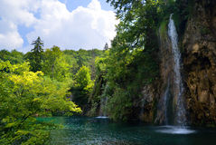 Waterfalls in forest stock photos