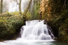 Waterfalls in forest Royalty Free Stock Image