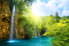 Waterfalls in forest. Fresh waterfalls in deep forest