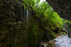 Waterfalls in a forest  Italy Royalty Free Stock Image