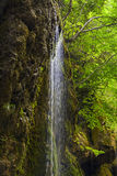 Waterfalls in a forest  Italy Royalty Free Stock Images