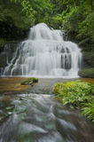 Waterfalls in the forest of Thailand. Stock Photography