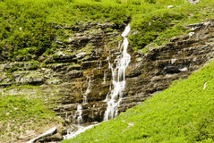 Waterfalls in Glacier. Waterfalls along the Going to the Sun Road in Glacier National Park Royalty Free Stock Images