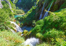 Waterfalls and grasses in Plitvice Lakes National Park (Croatia) Royalty Free Stock Photography