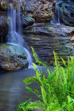 Waterfalls and green grass Royalty Free Stock Photos