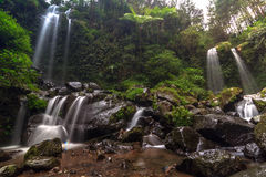 Waterfalls. Grejegan kembar waterfalls central java indonesia Royalty Free Stock Photos