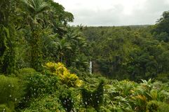 Waterfalls In Hawaii stock photography